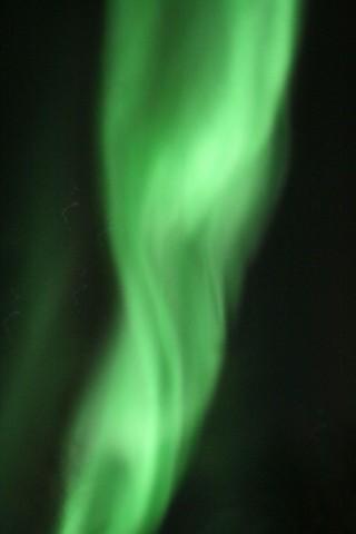 Aurora seen from Abisko, Sweden.  It looks a bit like an MRI scan of a knee.