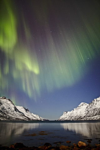Northern lights from Tromsø, Norway.