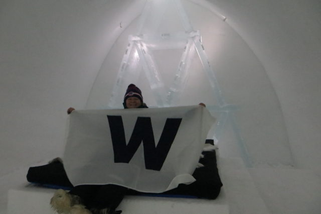 The author, Rosie Thompson, in her Ice Hotel room with the Chicago Cubs victory flag, celebrating their World Series win.