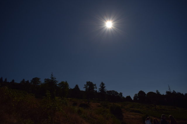 The landscape of Eola Hills, Oregon, where we watched the total solar eclipse 2017.