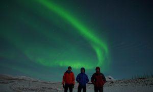 Live Aurora Network northern lights