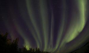 Aurora in Yellowknife by Martin Izzard