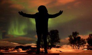 David Saul Fineberg Tromso, northern lights