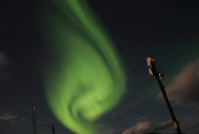 Aurora. Photo: Mark Lewney
